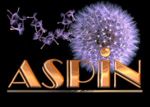 logo aspin